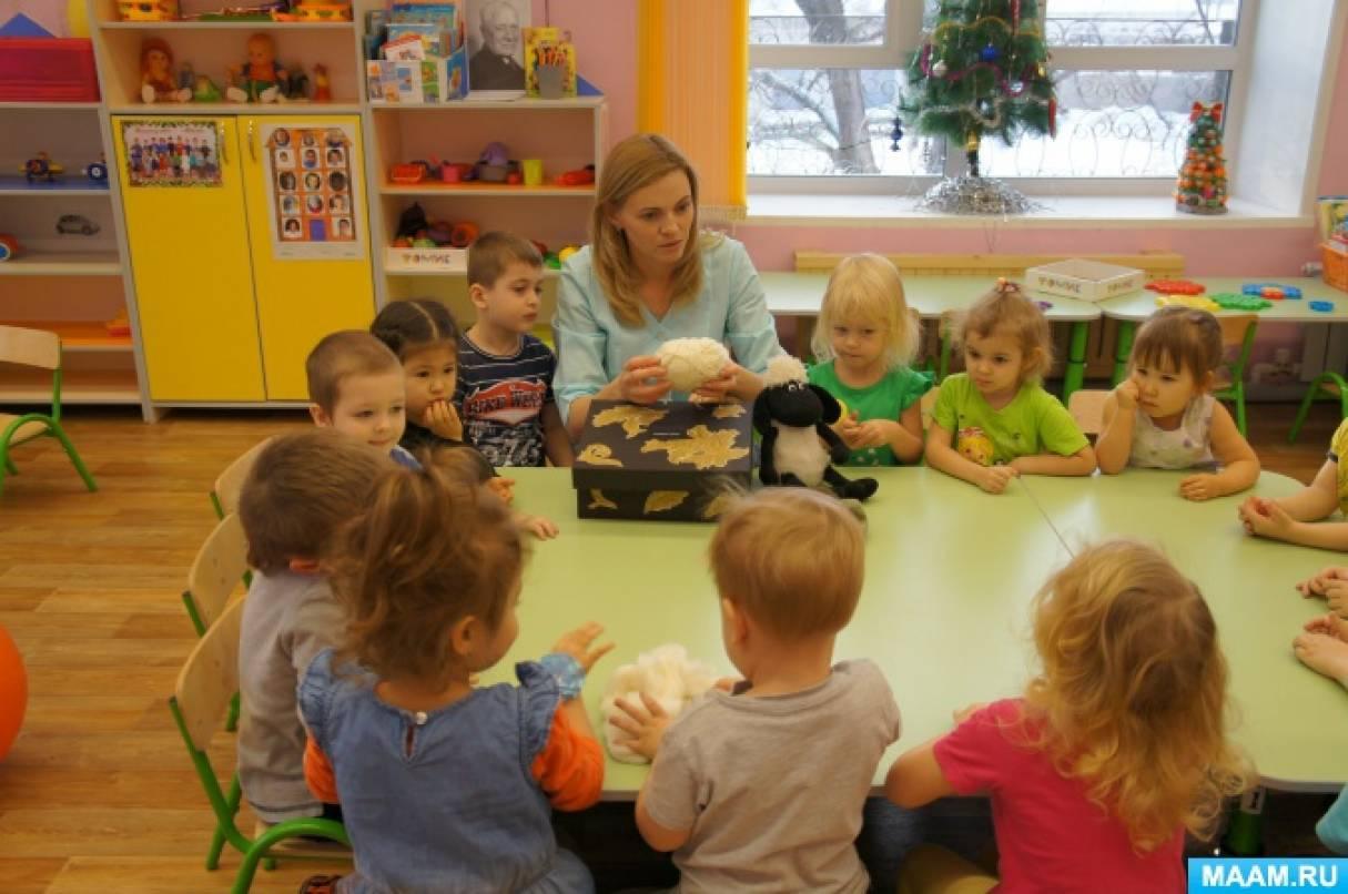 как познакомить детей на занятии с окружающим миром