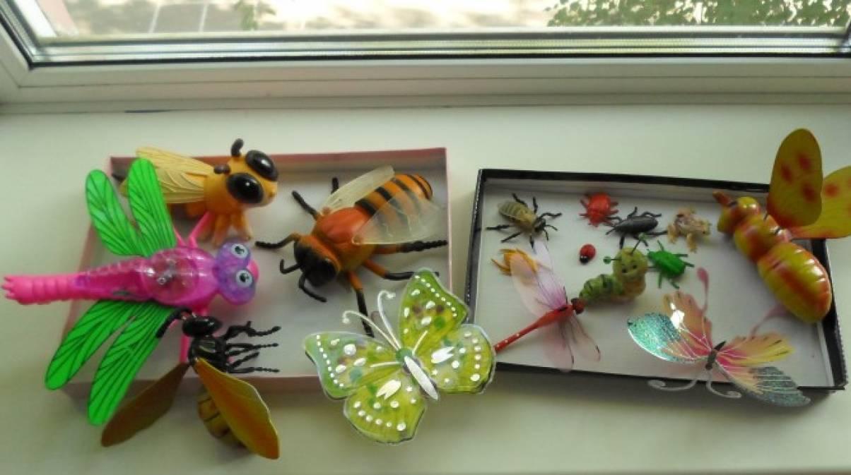 знакомство дошкольников с насекомыми