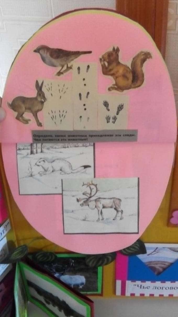 Лэпбук по пдд для детей - c1809