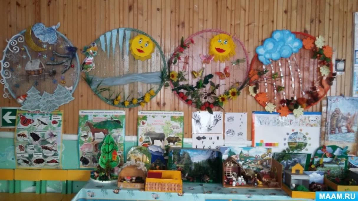 Уголок природы в детском саду Ребенок в детском саду