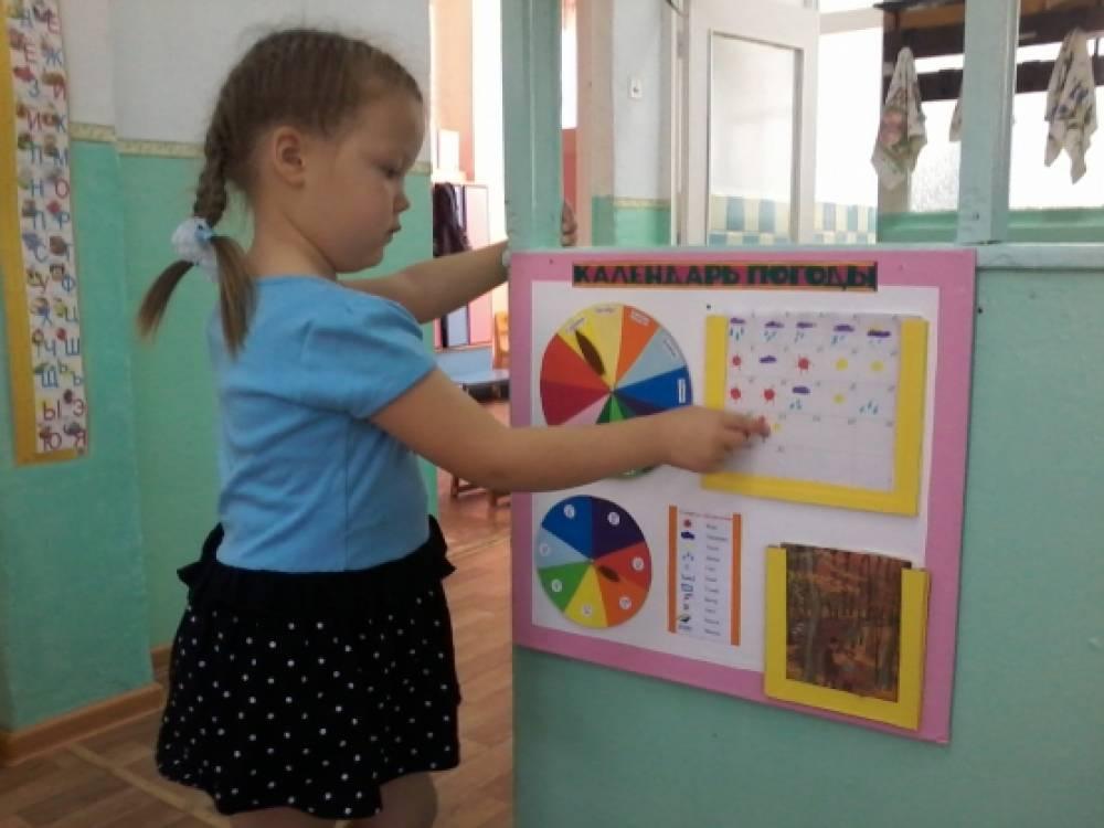 Цветные картинки для детей для уголка природы