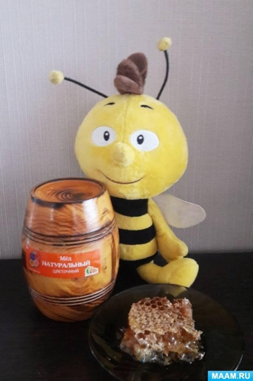 Конспект беседы в детском саду «Малышам о пчелах, меде и пчелиной работе»