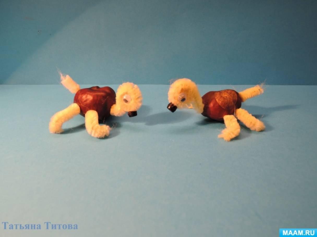 Черепашка из каштана и синельной проволоки. Детский мастер-класс для совместного творчества детей и родителей