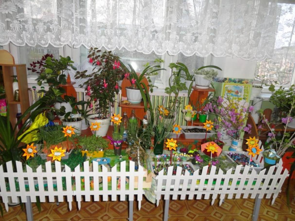 Фотоотчет «Огород на окне в детском саду»
