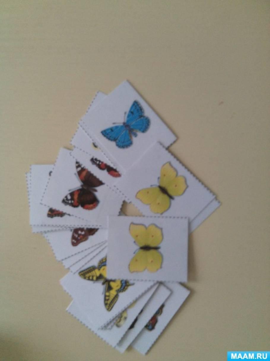 Дидактические игры на Тему «Бабочки»