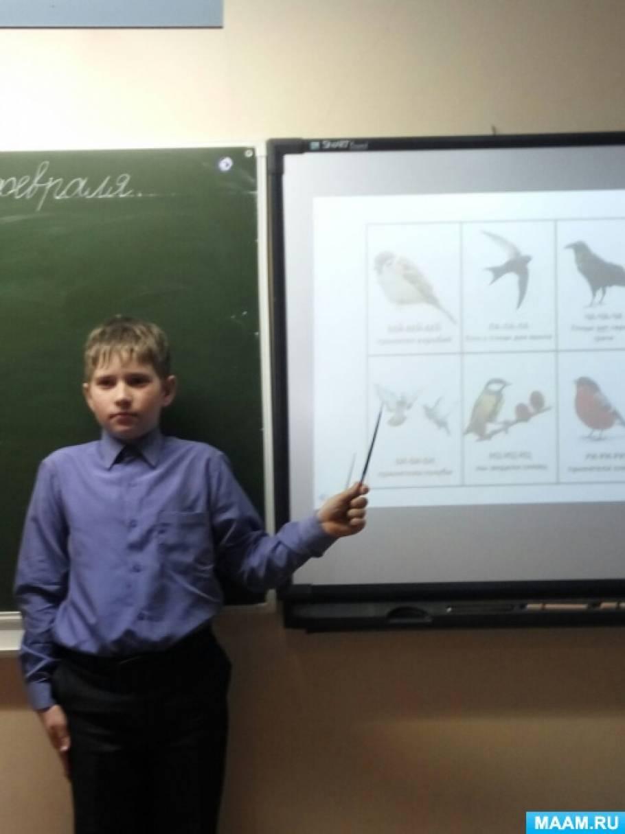 Исследовательский проект учащегося 3 класса «Зимующие птицы нашего края»