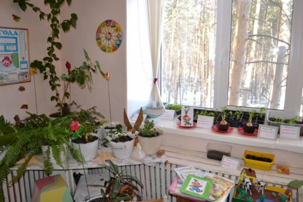 Мини-музеи открытки в детском саду