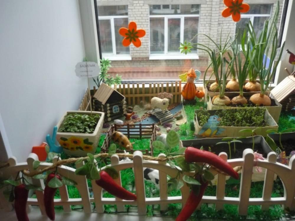 Живой уголок в детском саду своими руками фото
