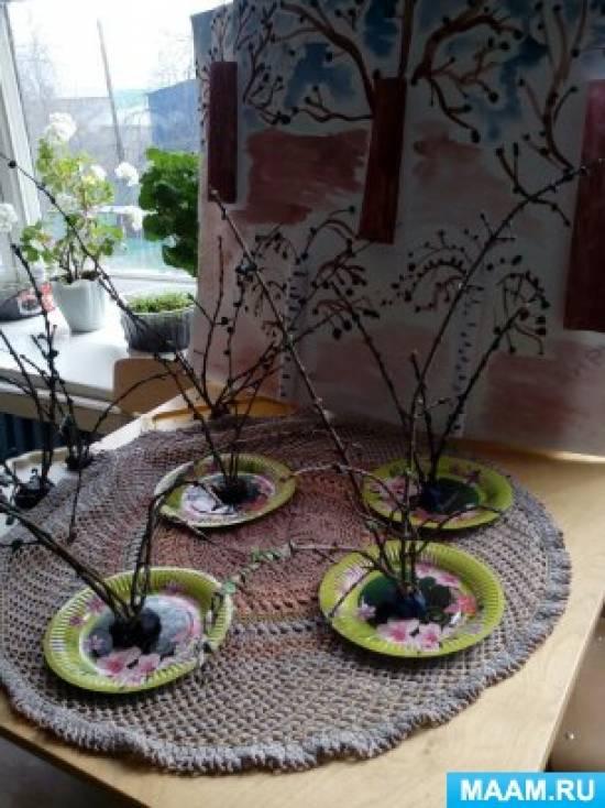 Проект «Деревья на нашем участке»