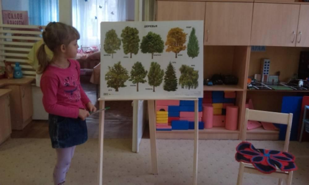 значение знакомства дошкольников с живой природой