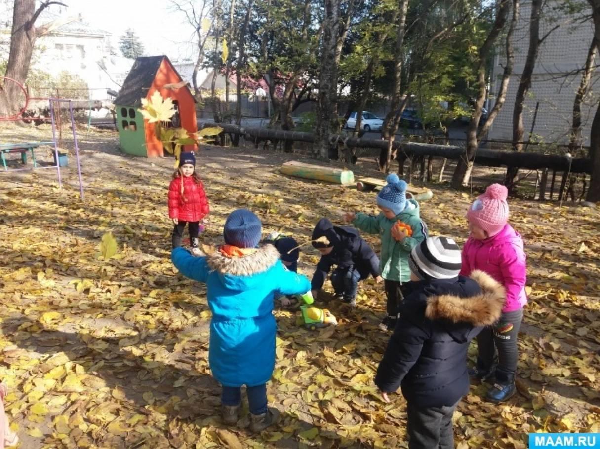 Конспект прогулки в младшей группе «Осенний букет»