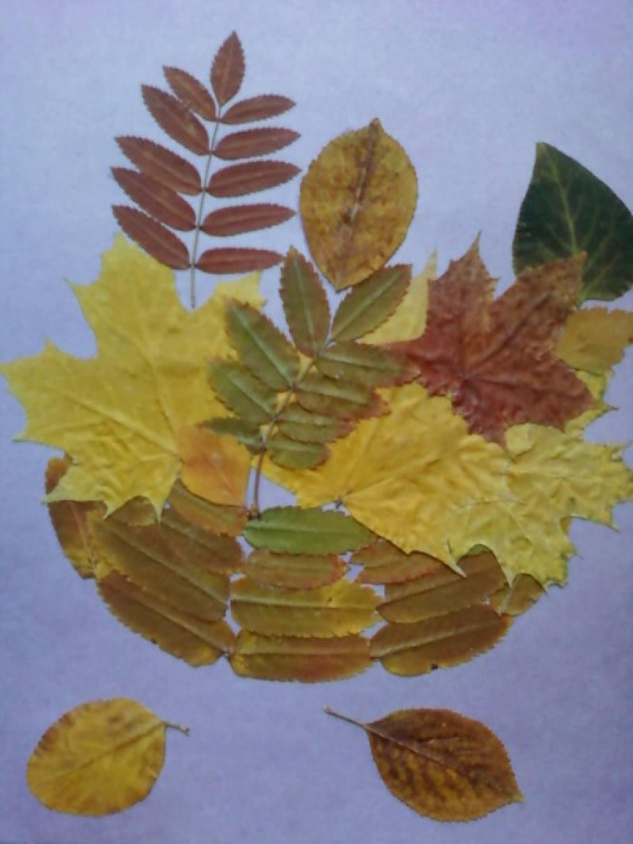 Аппликация из осенних листьев.  Творческая мастерская