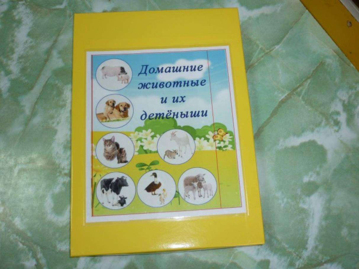 Тактильное пособие «Домашние животные и их детёныши»