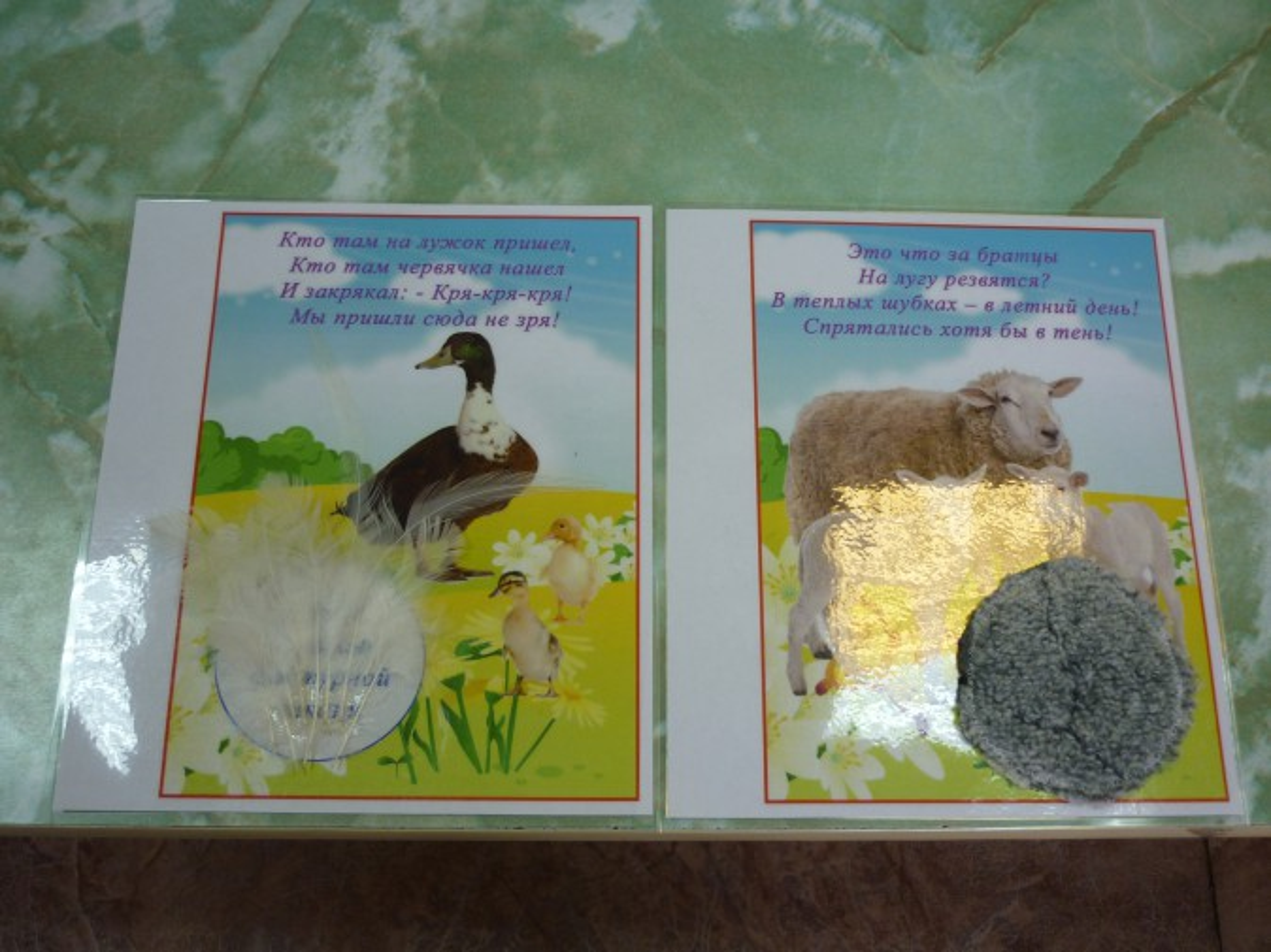 Детёныши домашних животных картинки для детей