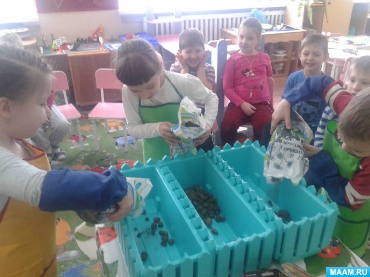 Экологический проект «Цветы на подоконнике и клумбе»