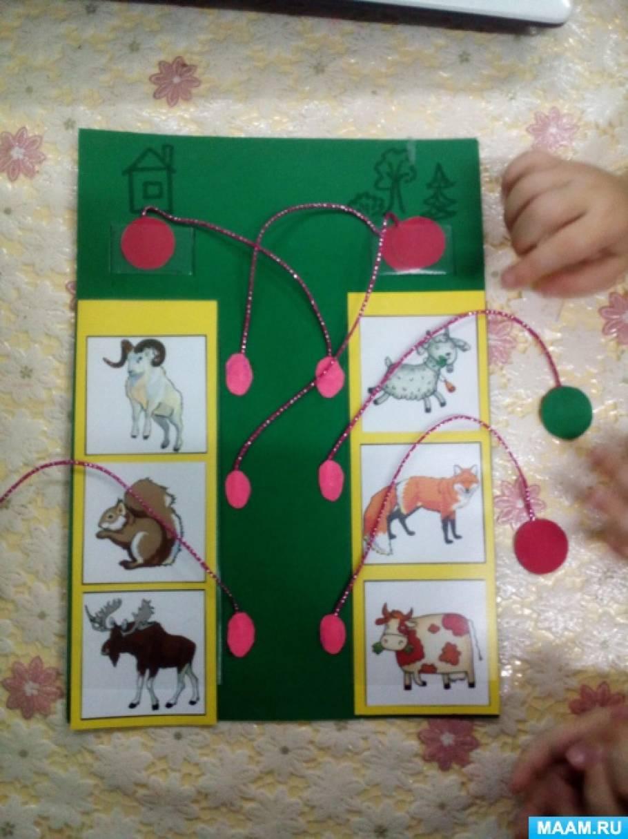 Мастер-класс по изготовлению дидактической игры для детей второй младшей группы «Дикие и домашние животные»