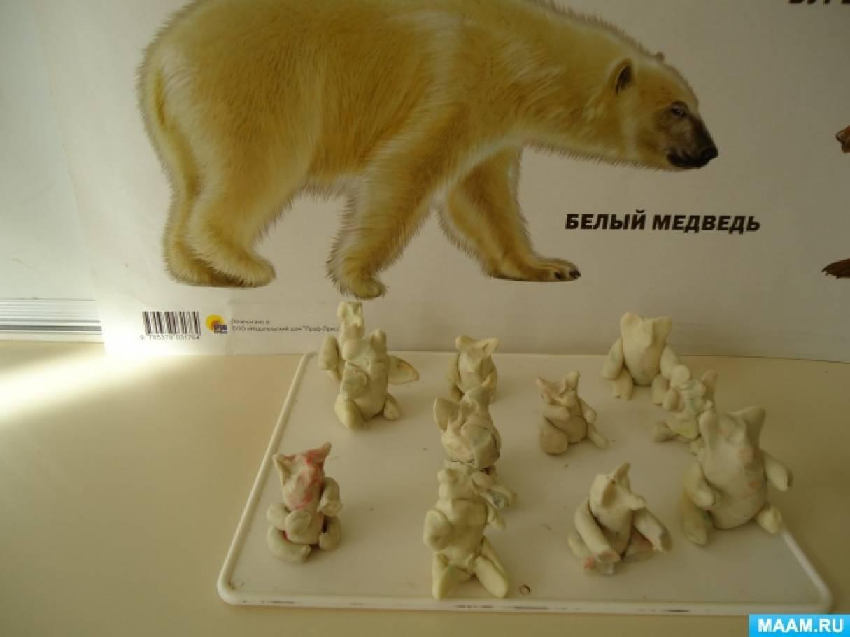 Конспект занятия по лепке «Белый медведь»