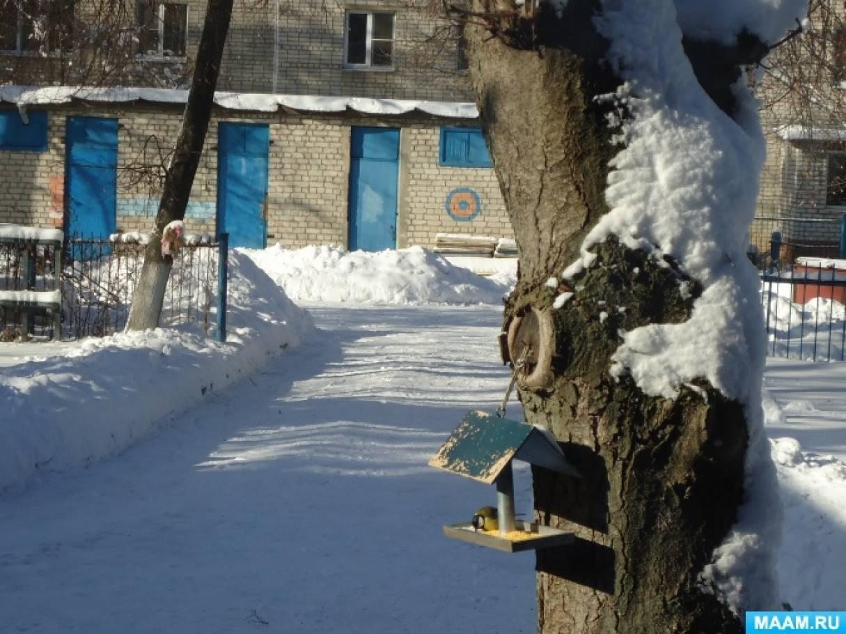 Конспект прогулки «Наблюдение за синицами»