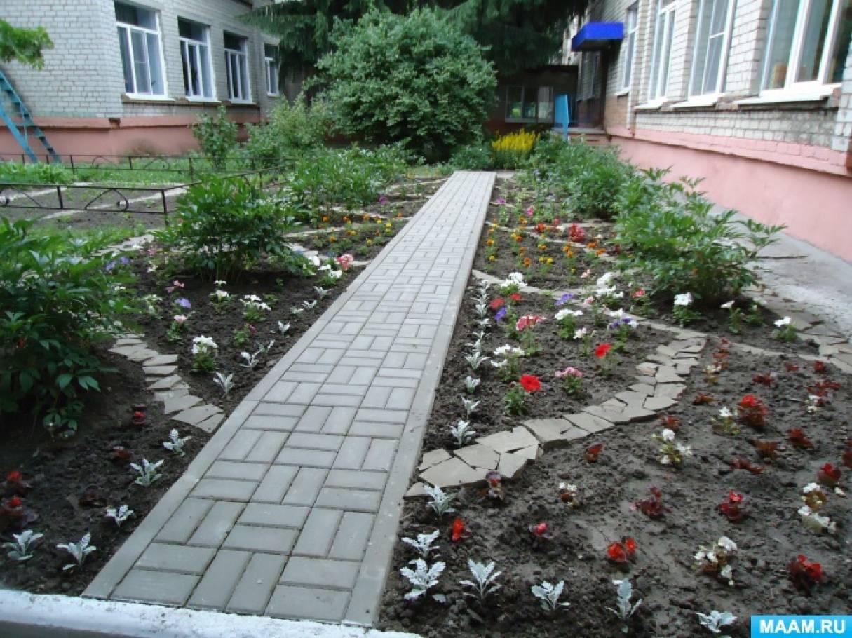 Конспект прогулки «Наблюдение за цветами»
