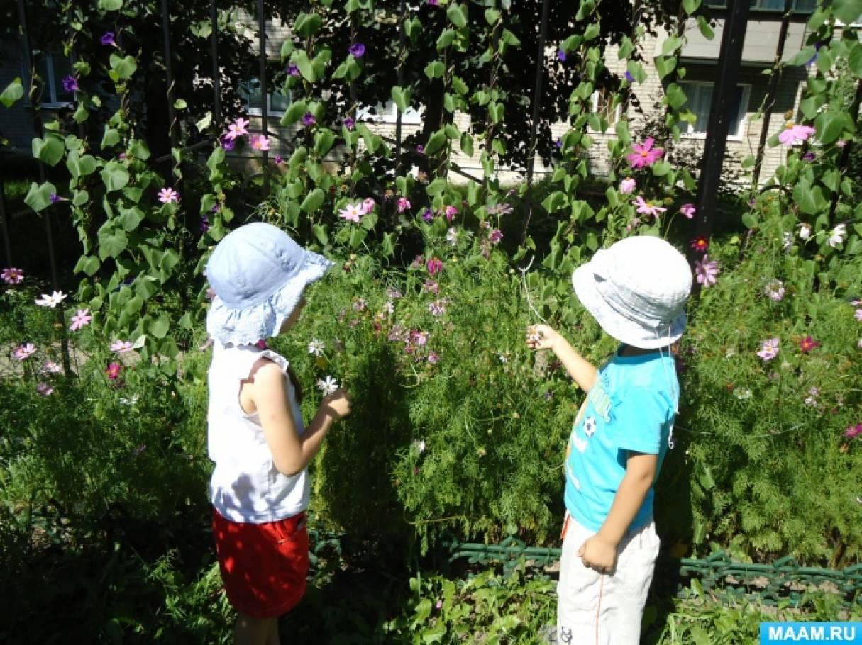 Конспект прогулки с экспериментированием «Наблюдение за растениями»