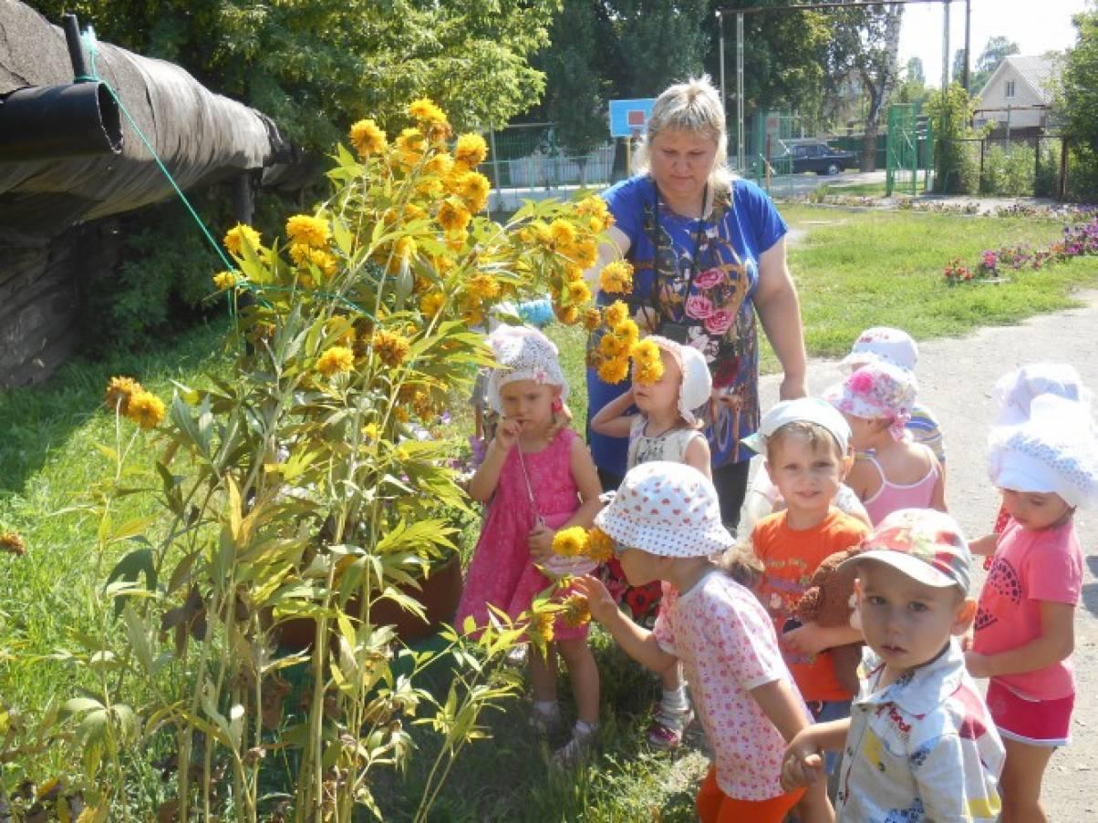 Фотоотчёт «Знакомство с цветником детского сада» (вторая младшая группа)