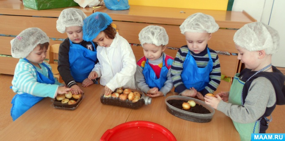 Фотоотчет о мини-проекте «Посадка лука» в первой группе раннего возраста