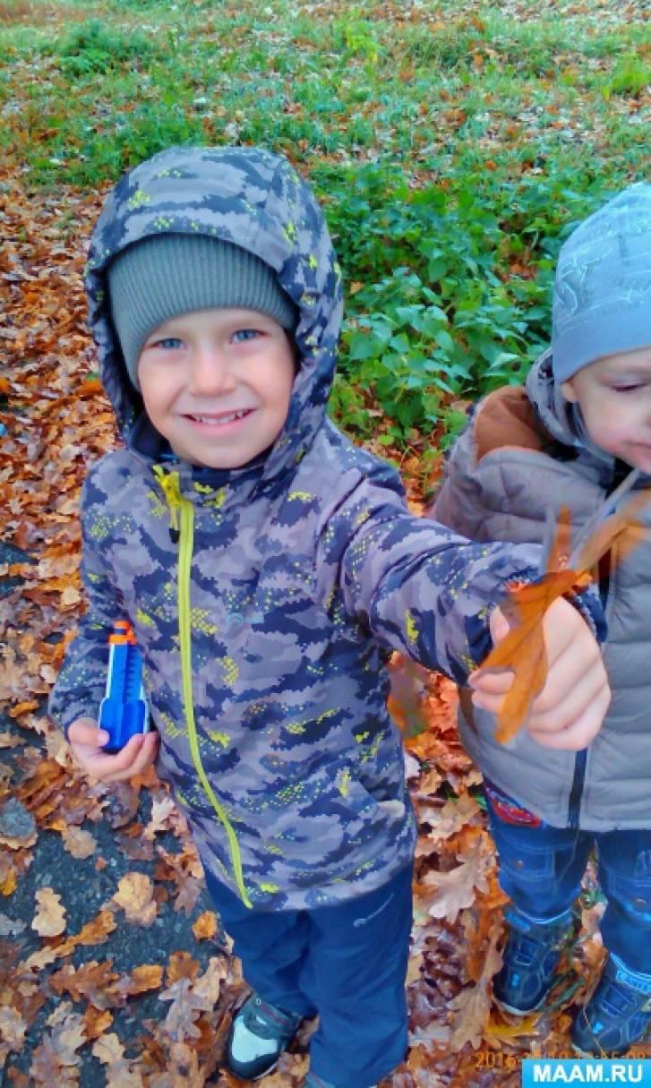 Фотоотчет «Осенняя прогулка к дубу»