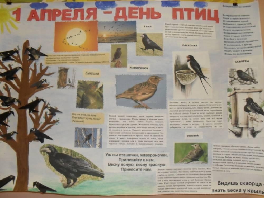 Как сделать птицу ко дню птиц