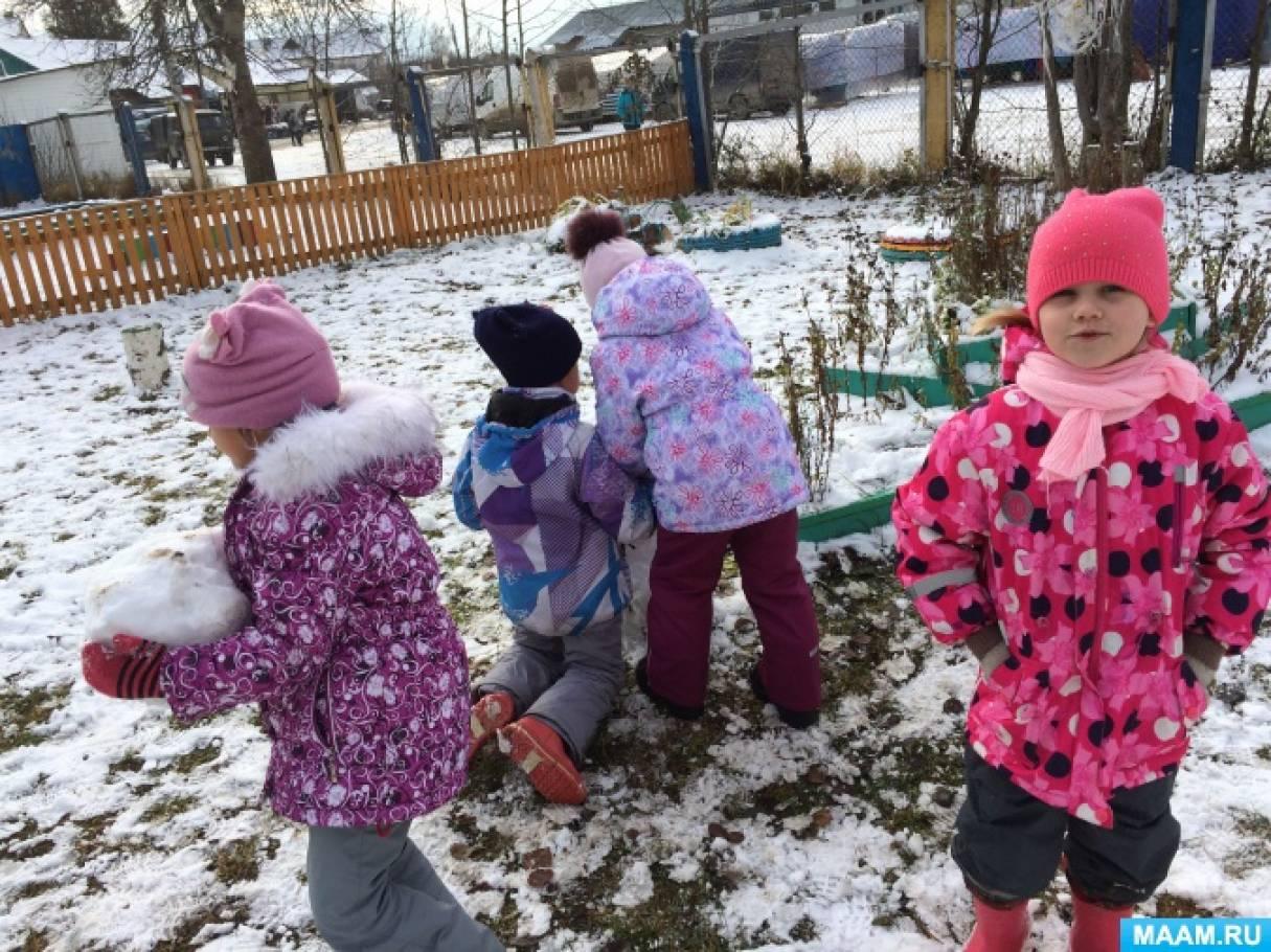 Наблюдение за сезонными изменениями. Прогулка «Первый снег»