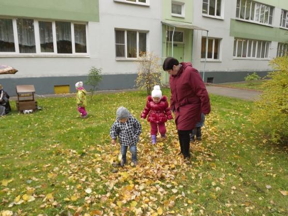 Осенние наблюдения на территории детского сада (в рамках проектной деятельности «Причудливая осень»)