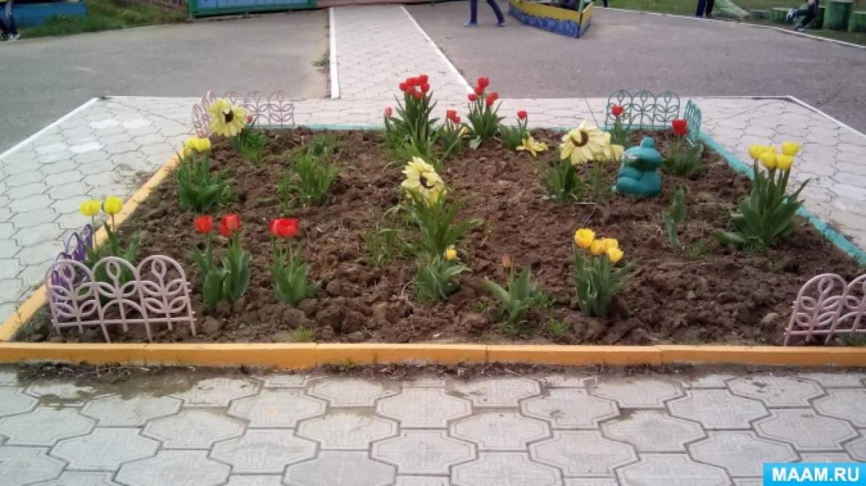 Клумба на участке детского сада
