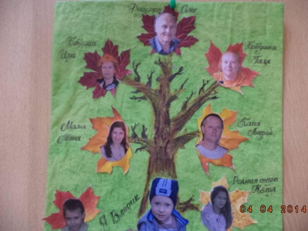 Как сделать семейное дерево в сад