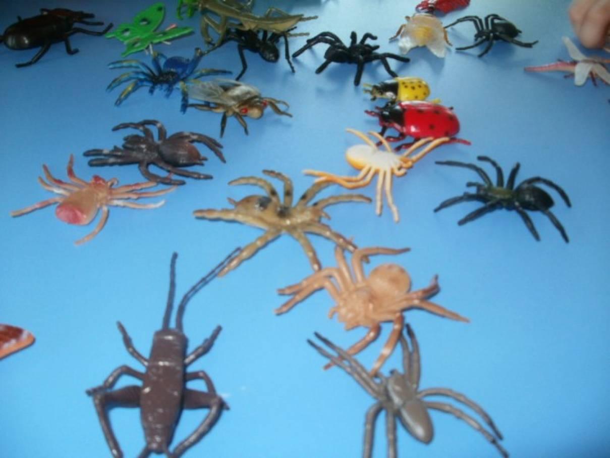 конспект занятия в младшей группе знакомство с насекомыми