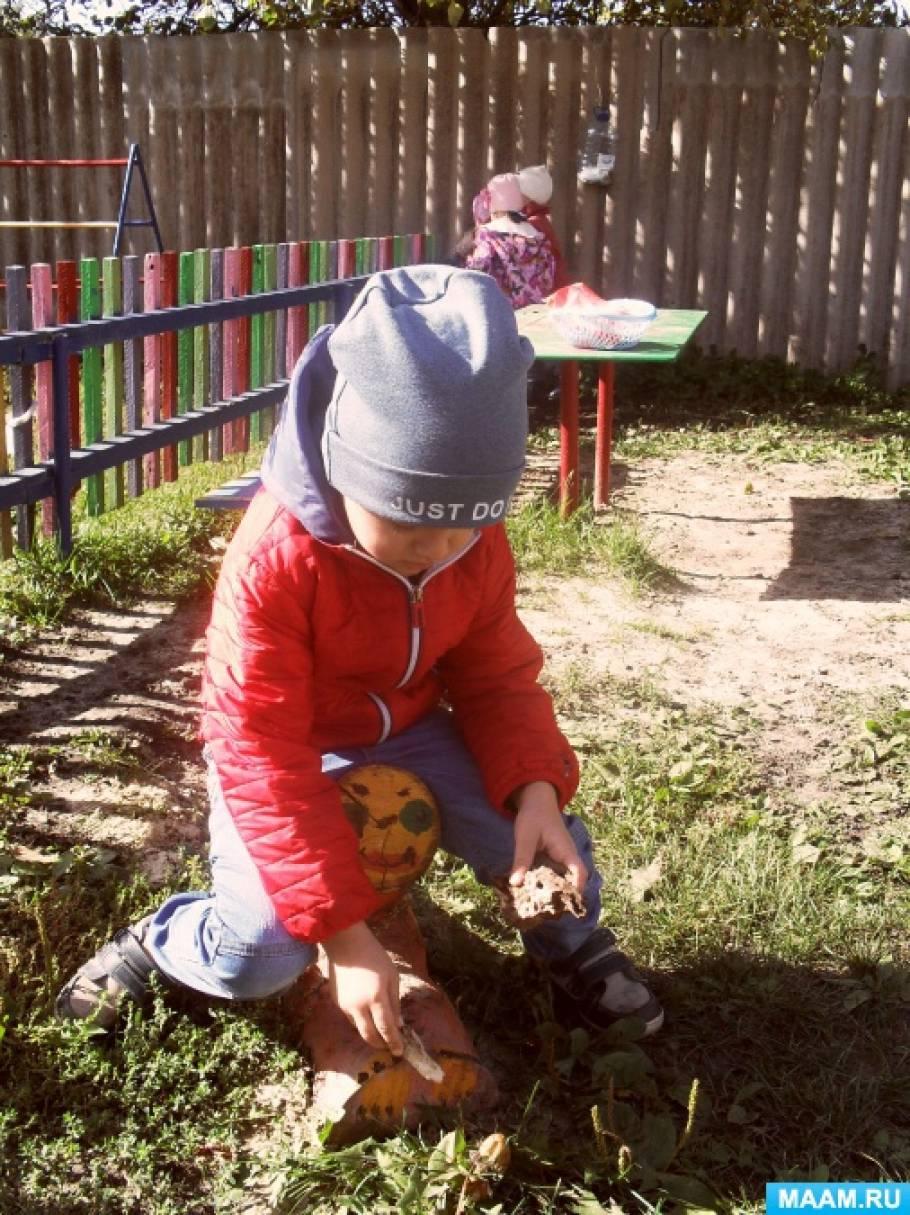 Воспитание у детей бережного отношения к природе