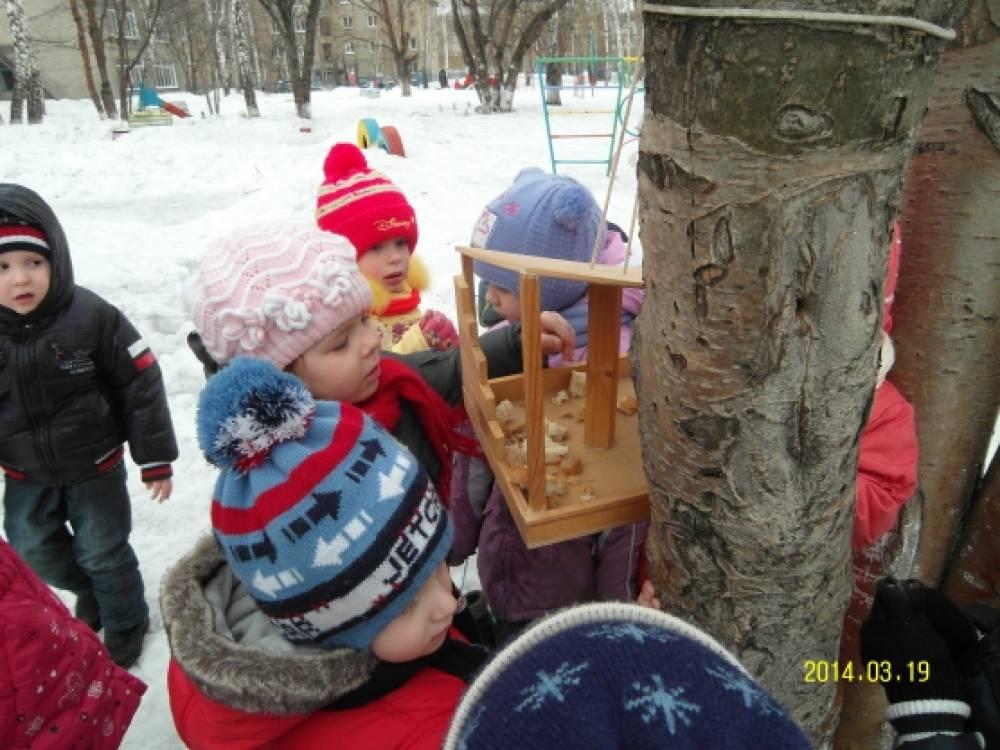 Зимующие птицы томской области картинки фото