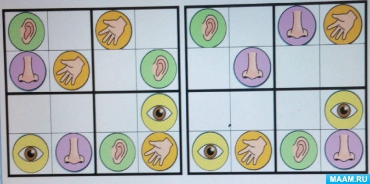 Дидактическая игра-судоку «Органы чувств» (старшая группа)