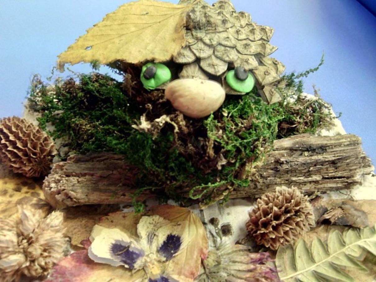 Вырастить кактус из семян в домашних условиях