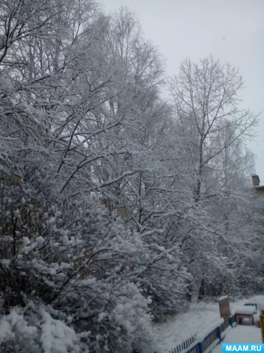 Конспект целевой прогулки «Зимой деревья спят»