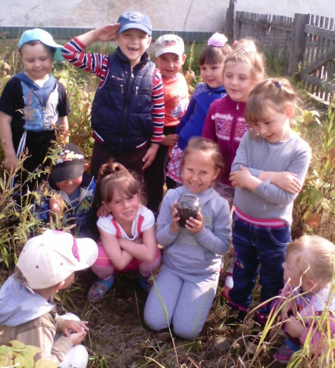 Фотоотчет об осенней прогулке «Труд детей в природе. Сбор ягод черной смородины»