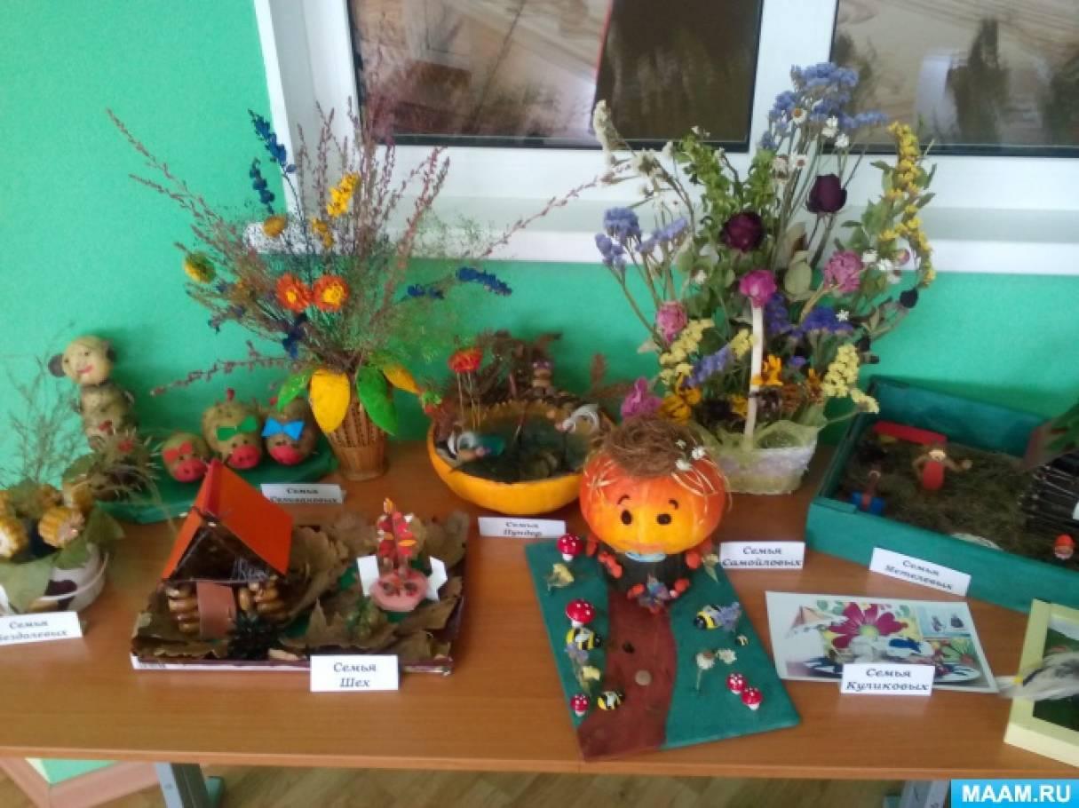 Экологический проект «Осень золотая» в разновозрастной группы
