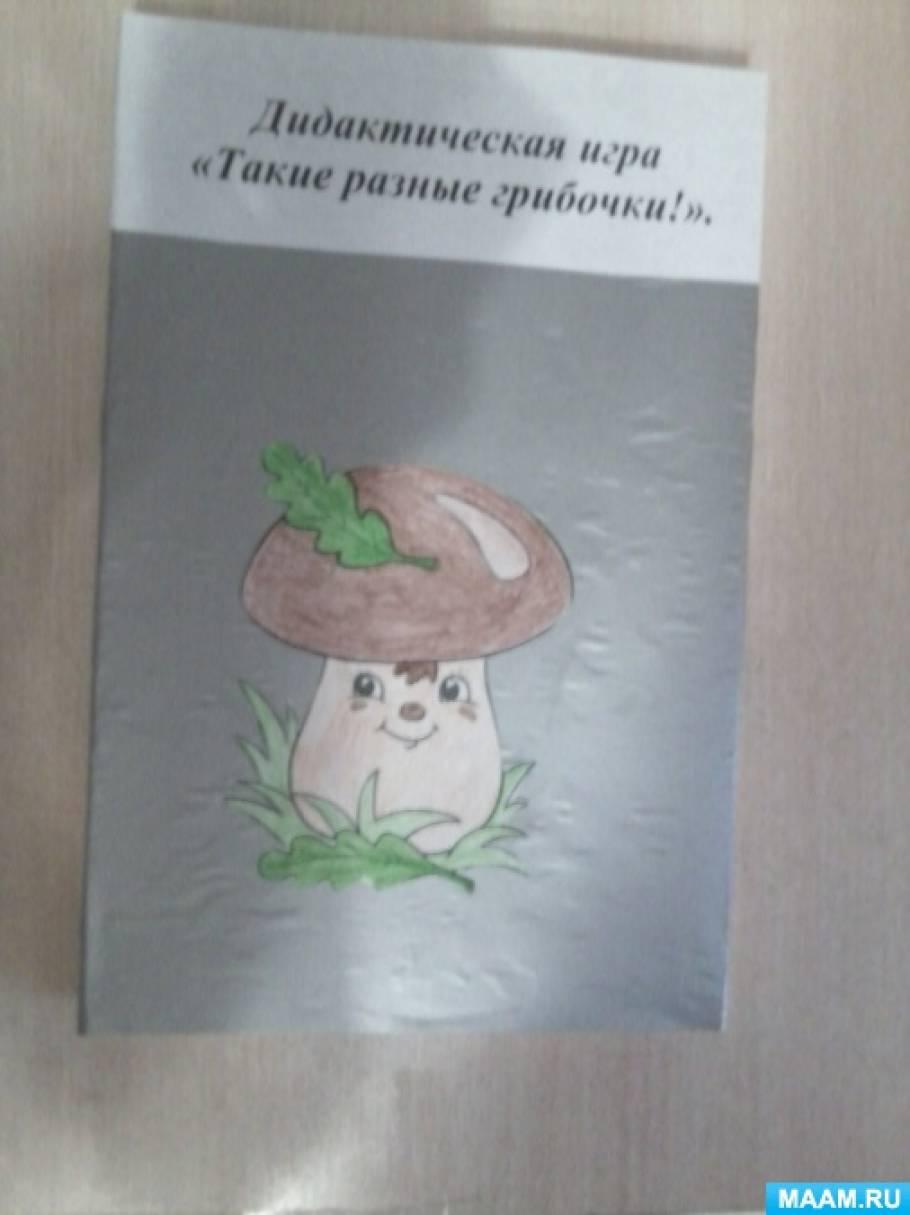 Дидактическая игра «Такие разные грибочки»