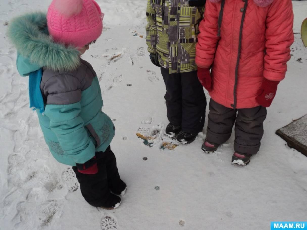 Конспект занятия «Наблюдение за следами на снегу»
