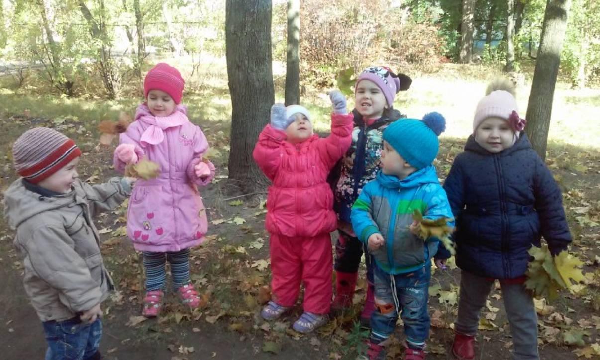 Целевая прогулка в младшей группе «Наблюдение за листопадом»