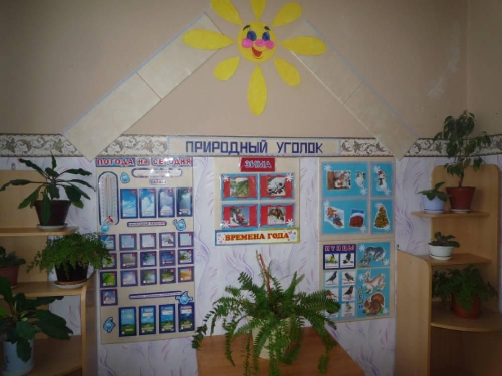 Уголок природы в детском саду своими руками осень