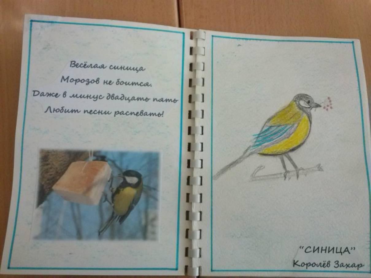 Книжка своими руками птицы
