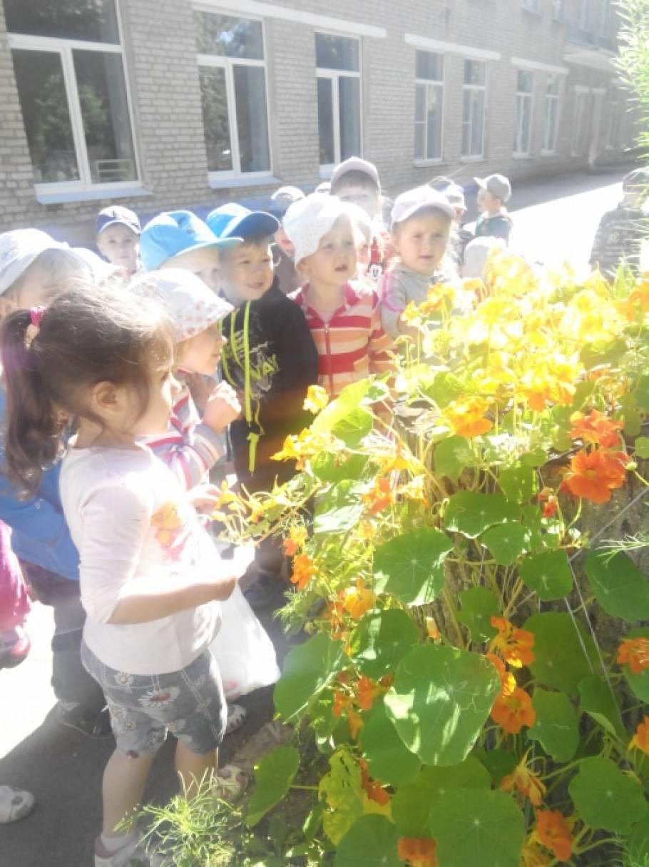 Фотоотчет «Экскурсия в цветник «День цветов»