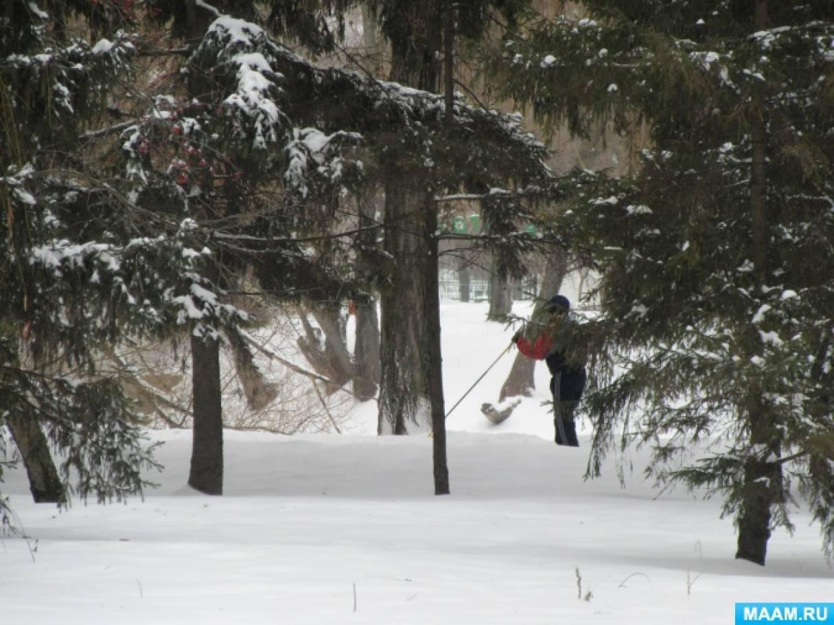 Зима скользит по январю, через февраль, к началу марта… Эссе в прозе и стихах, с фотозарисовками