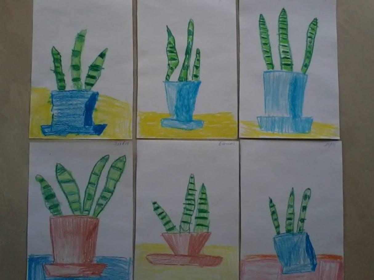 Конспект занятия по рисованию в подготовительной группе на тему комнатные растения