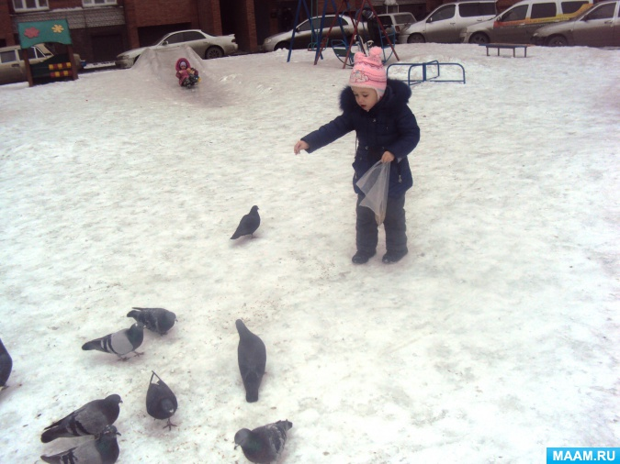 Экологический проект во второй младшей группе «Зимующие птицы»