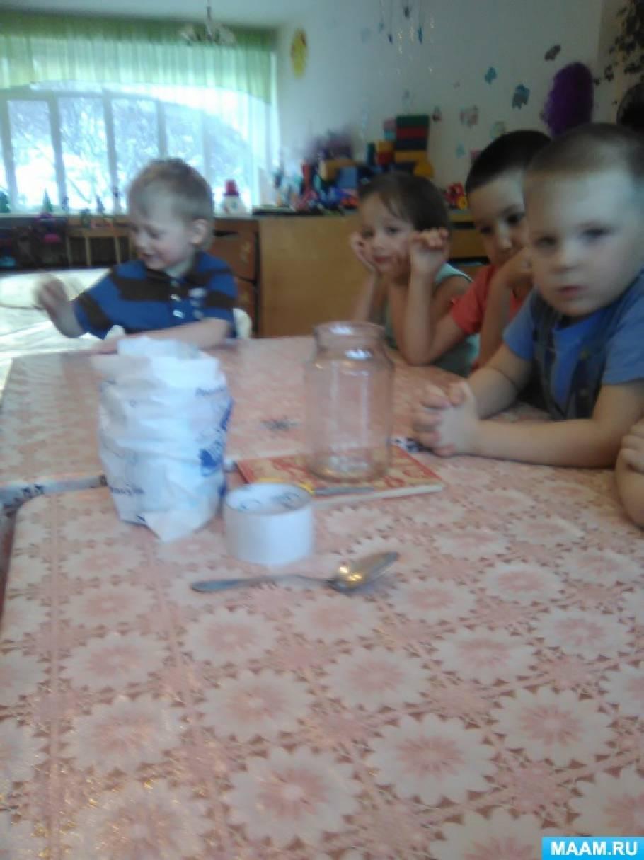 Экспериментальная деятельность «Выращивание кристаллов»